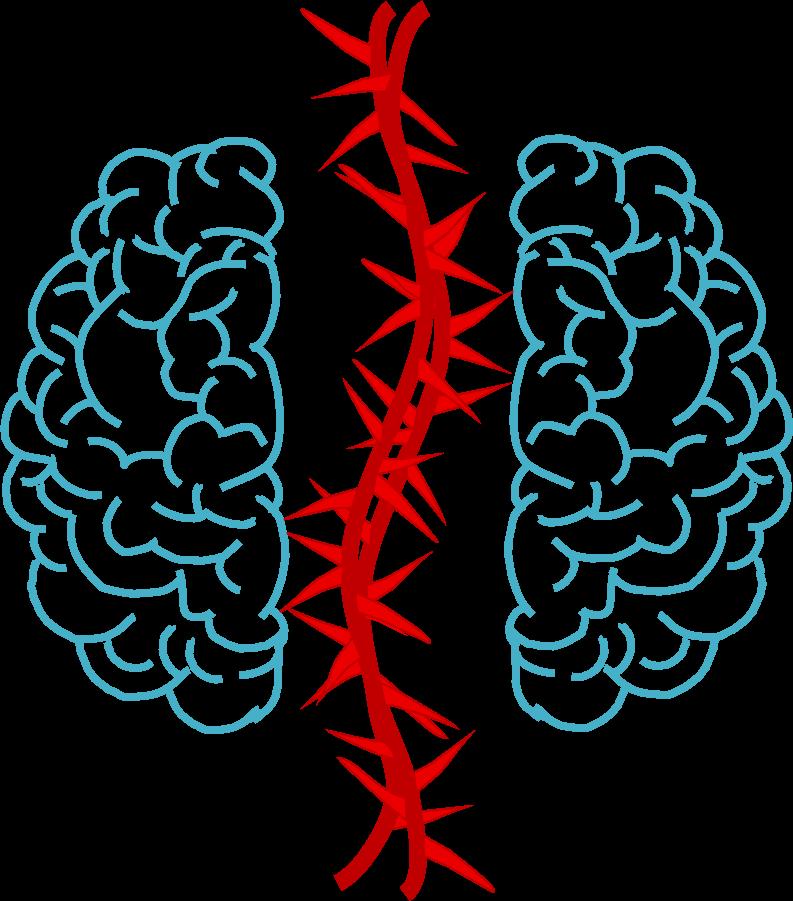 Wie kommt es zum Schmerz? Gehirn - Neuromatirx