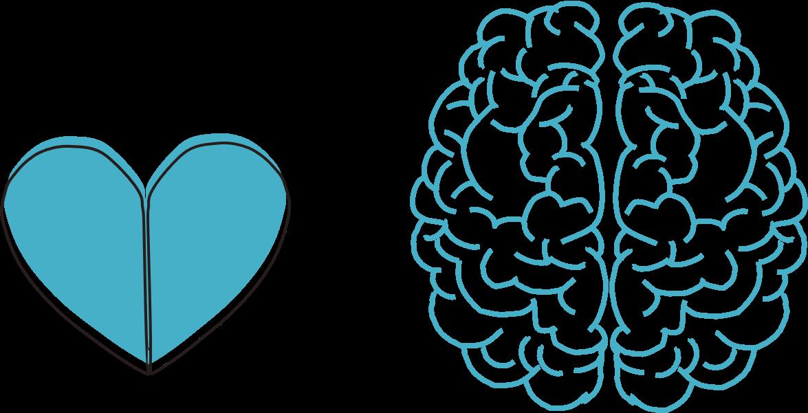 Gefühle und Gehirn